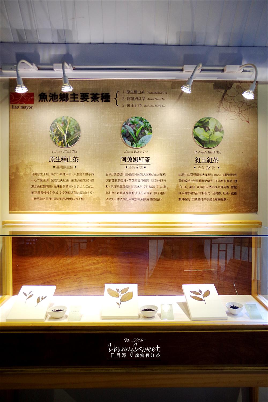 2016-1127-廖鄉長紅茶故事館-09.jpg