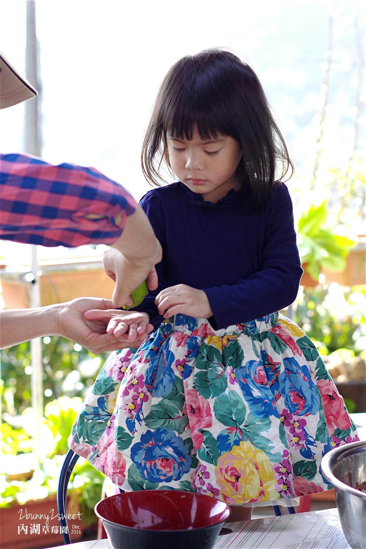 2016-1225-內湖草莓園-13.jpg