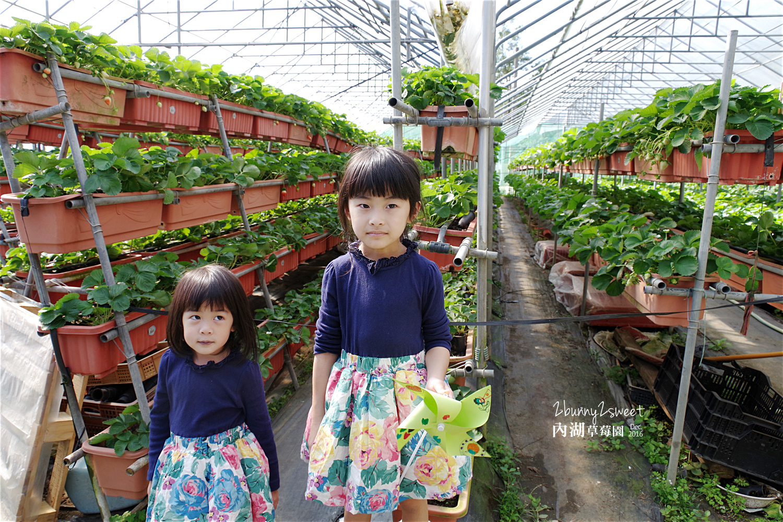 2016-1225-內湖草莓園-39.jpg