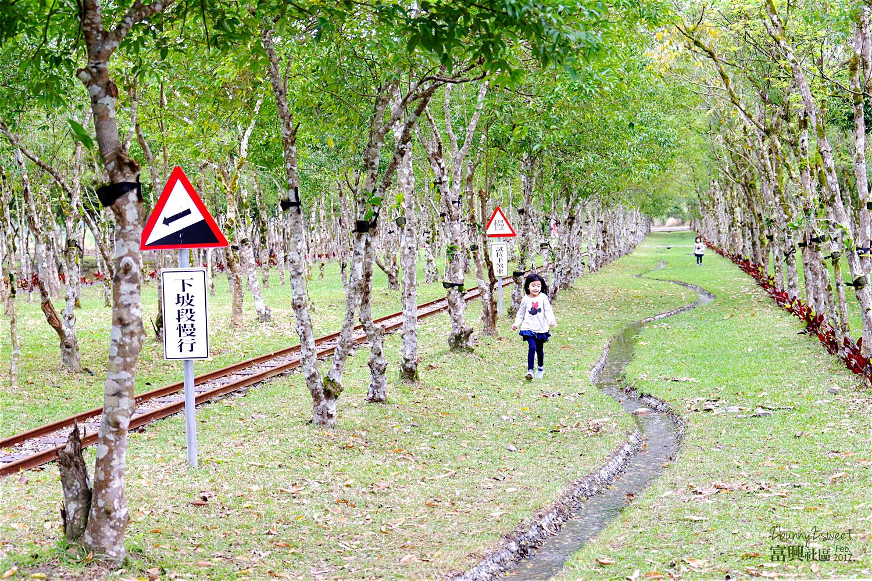 2017-0204-富興社區小火車-45.jpg