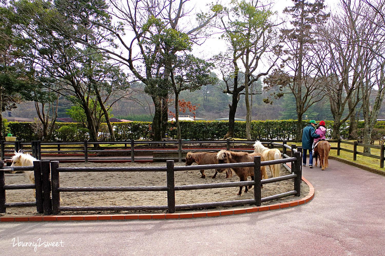 2019-0302-九州自然野生動物園-04.jpg