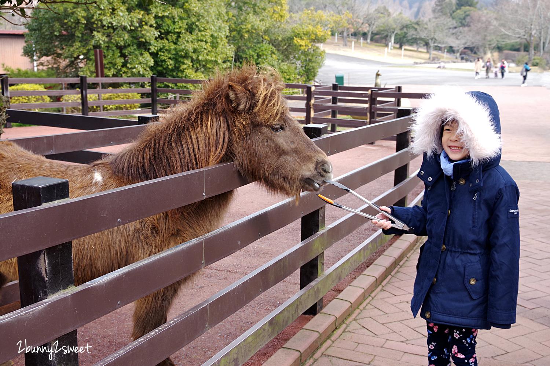 2019-0302-九州自然野生動物園-08.jpg