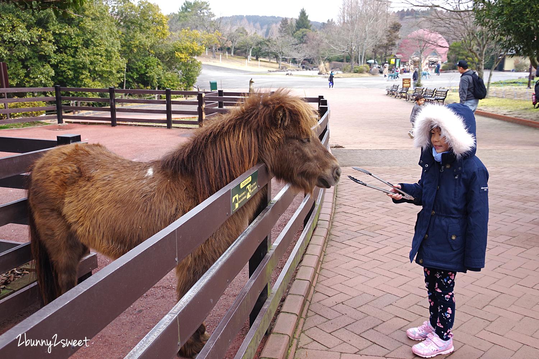 2019-0302-九州自然野生動物園-09.jpg
