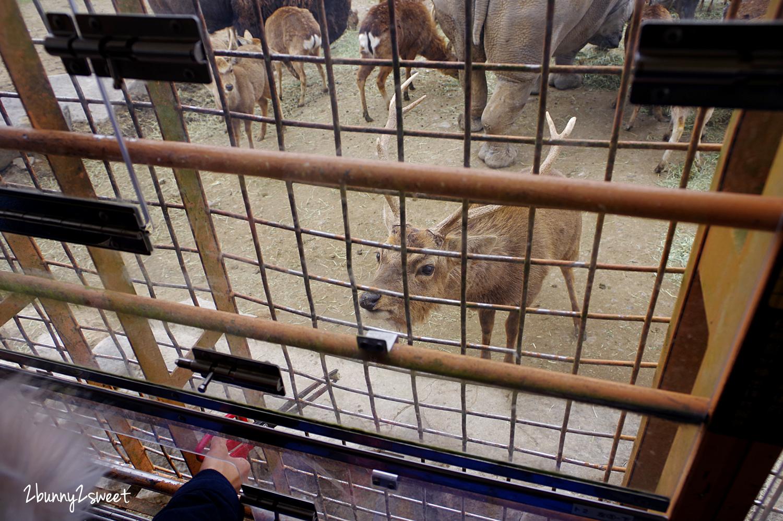2019-0302-九州自然野生動物園-46.jpg
