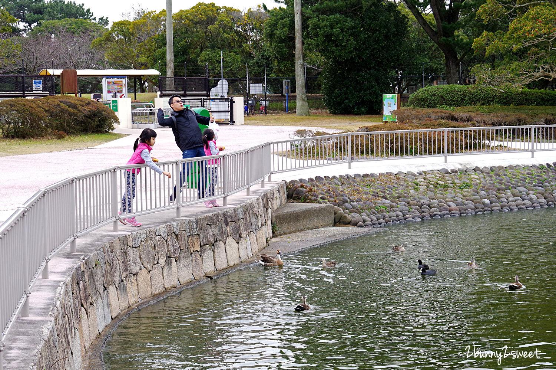 2019-0305-海の中道海浜公園-54.jpg
