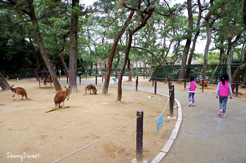 2019-0305-海の中道海浜公園-56.jpg