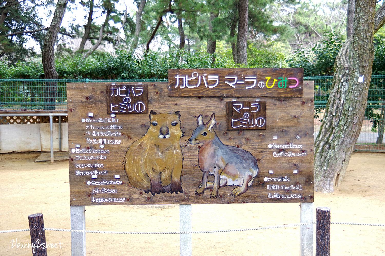 2019-0305-海の中道海浜公園-58