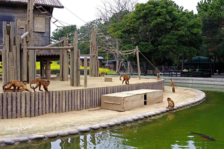 2019-0305-海の中道海浜公園-60