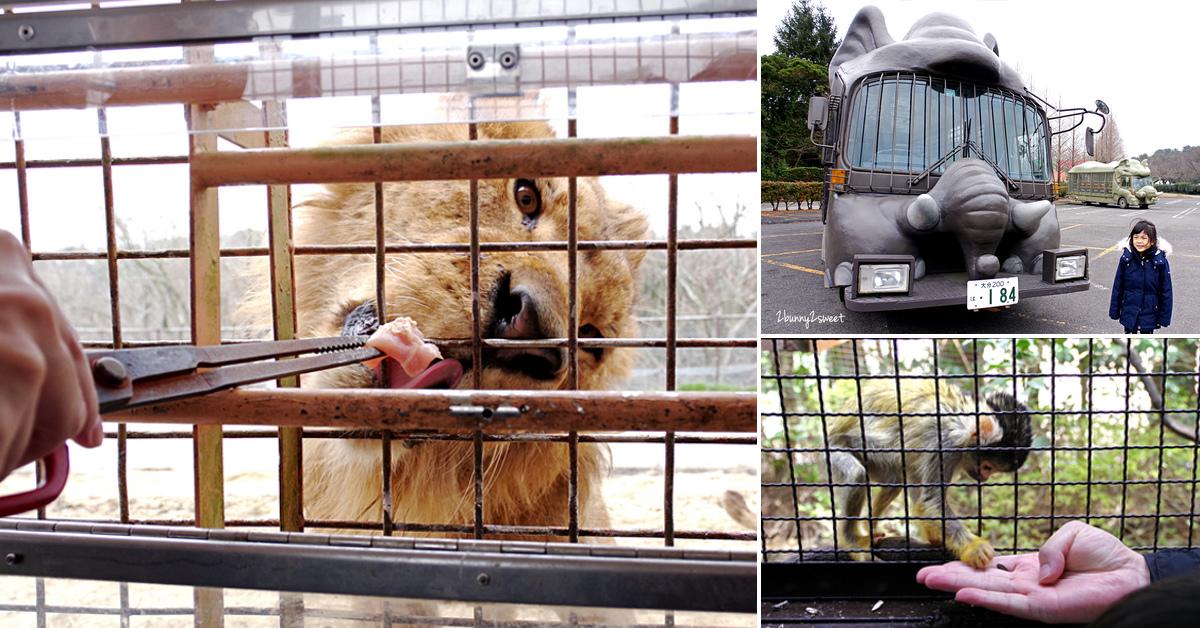 2019-0302-九州自然野生動物園-58