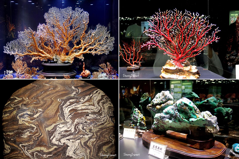2019-1123-綺麗珊瑚博物館-09