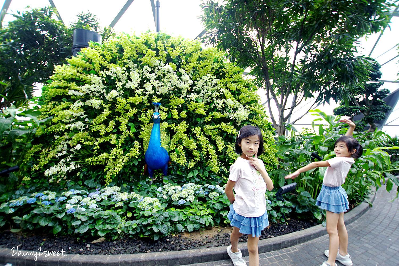 2019-1209-Canopy Park 星空花園-01.jpg