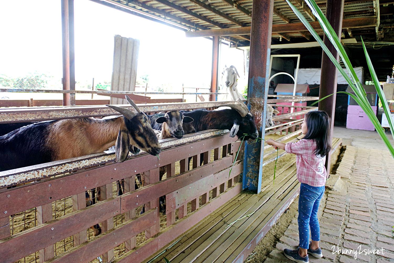 2020-0307-可達休閒羊場-28.jpg