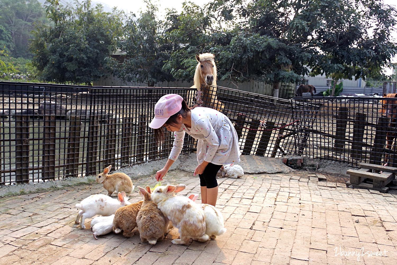 2020-0331-京葉馬場兔樂園-15.jpg