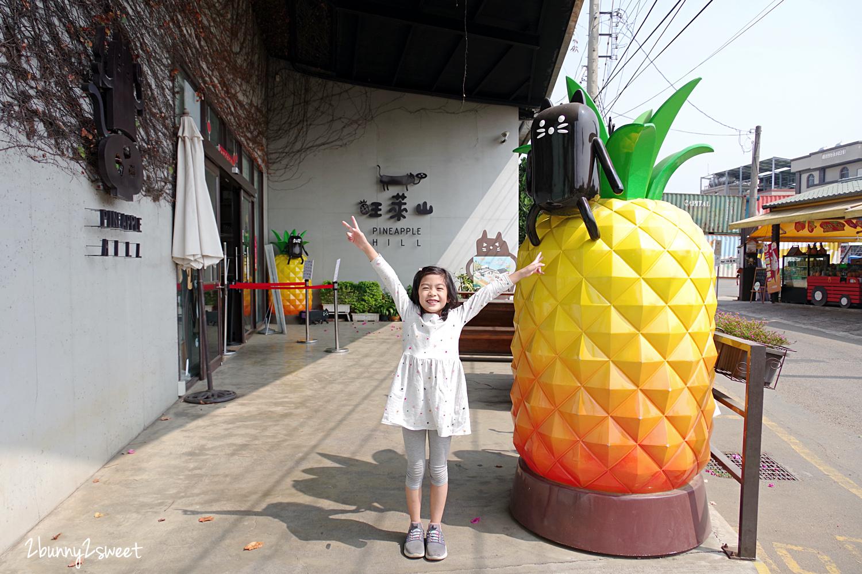 2020-0304-旺萊山鳳梨文化園區-01.jpg