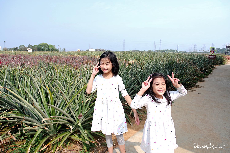 2020-0304-旺萊山鳳梨文化園區-15.jpg