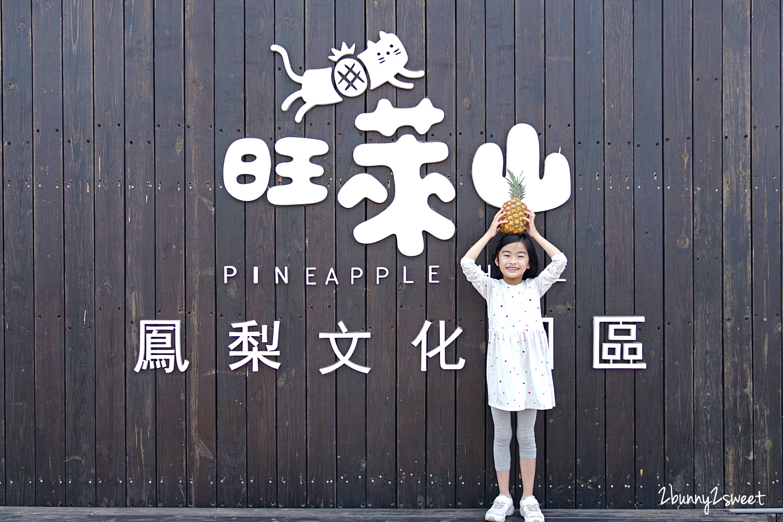 2020-0304-旺萊山鳳梨文化園區-18.jpg