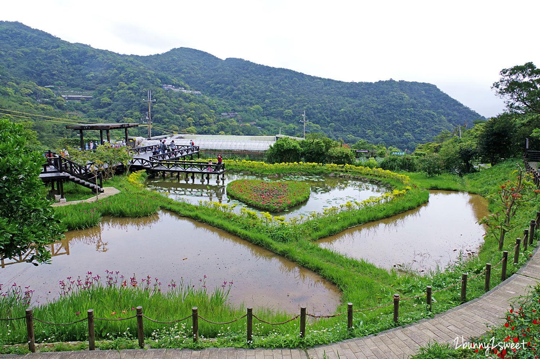 2020-0403-白石湖吊橋&白石湖草莓園-05.jpg