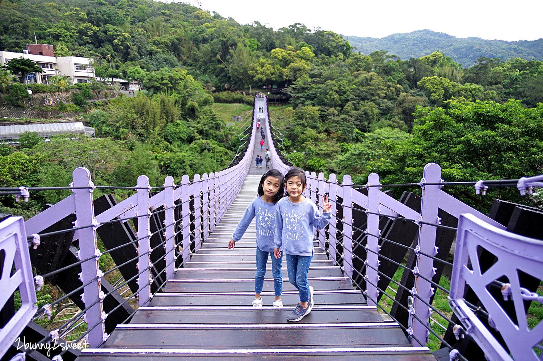 2020-0403-白石湖吊橋&白石湖草莓園-02.jpg