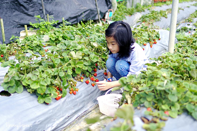 2020-0403-白石湖吊橋&白石湖草莓園-09.jpg