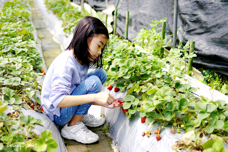2020-0403-白石湖吊橋&白石湖草莓園-07.jpg