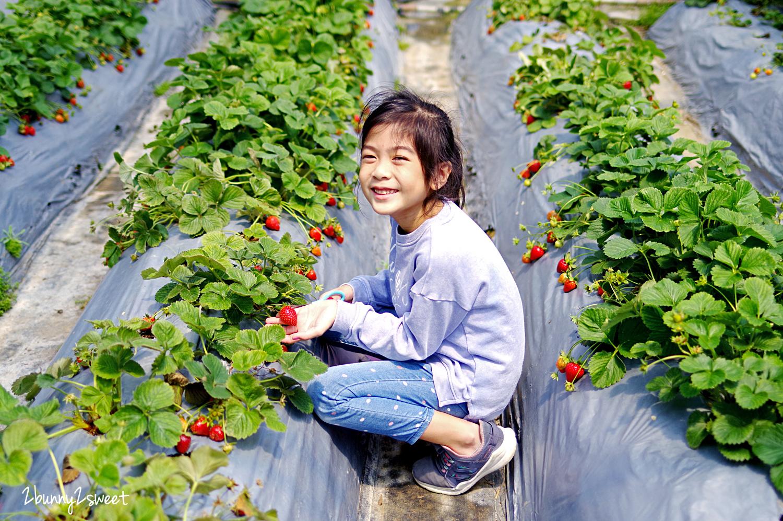 2020-0403-白石湖吊橋&白石湖草莓園-11.jpg