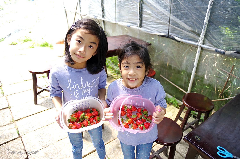 2020-0403-白石湖吊橋&白石湖草莓園-14.jpg