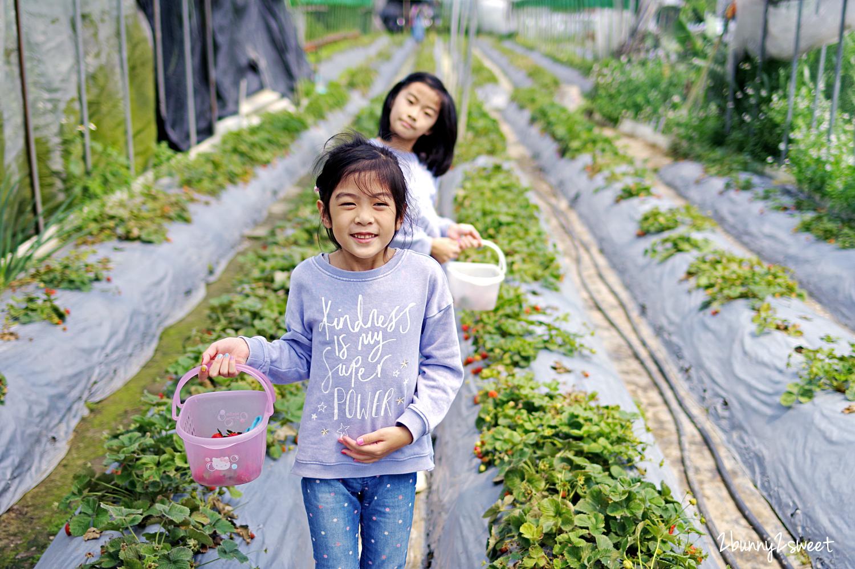 2020-0403-白石湖吊橋&白石湖草莓園-12.jpg