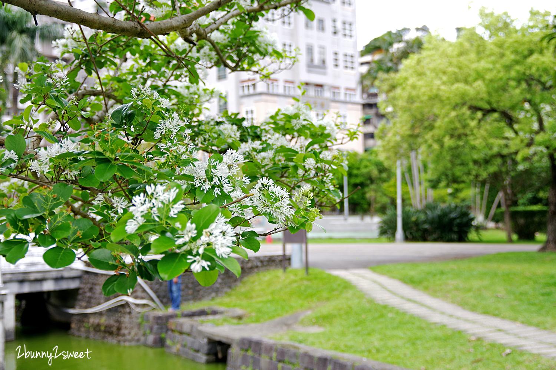 2020-0403-碧湖公園-03.jpg