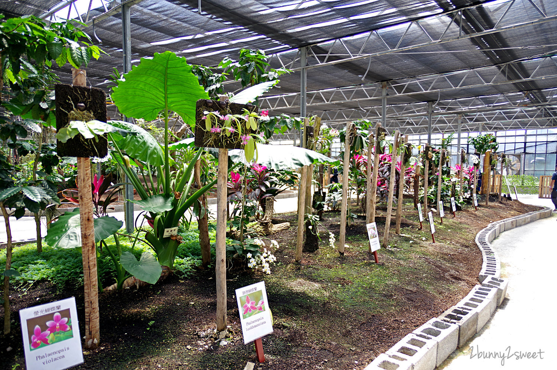 2020-0308-金車礁溪蘭花園-14.jpg