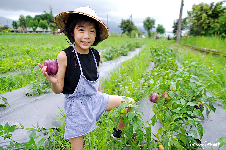 2020-0524-張美阿嬤農場-30.jpg