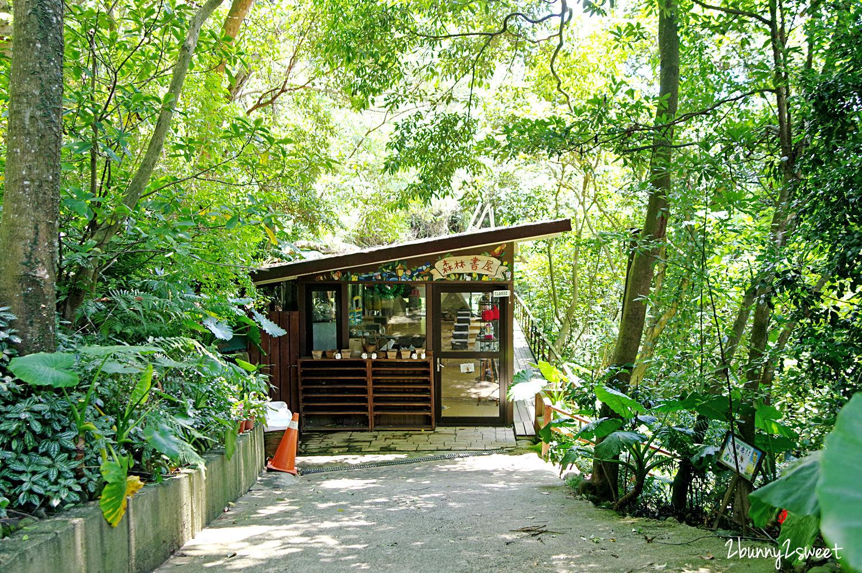 2020-0531-森林鳥花園-17.jpg