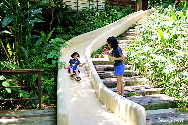 2020-0531-森林鳥花園-24.jpg