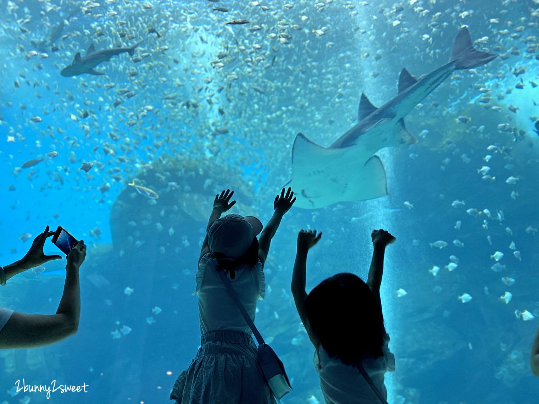 2020-0730-Xpark 水族館-05.png