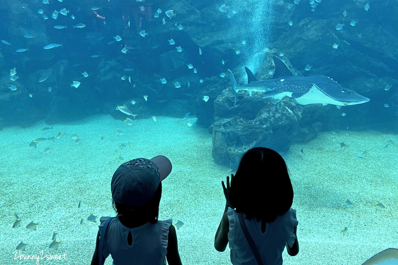 2020-0730-Xpark 水族館-07.png