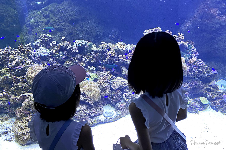 2020-0730-Xpark 水族館-14.png