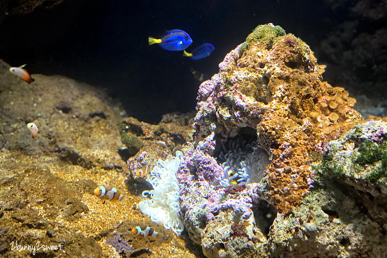 2020-0730-Xpark 水族館-17.png