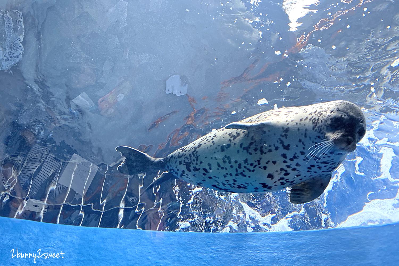2020-0730-Xpark 水族館-25.png