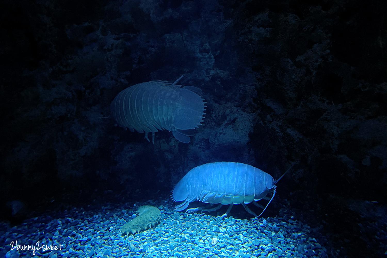 2020-0730-Xpark 水族館-27.png