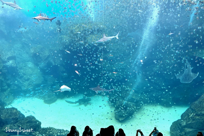 2020-0730-Xpark 水族館-35.png