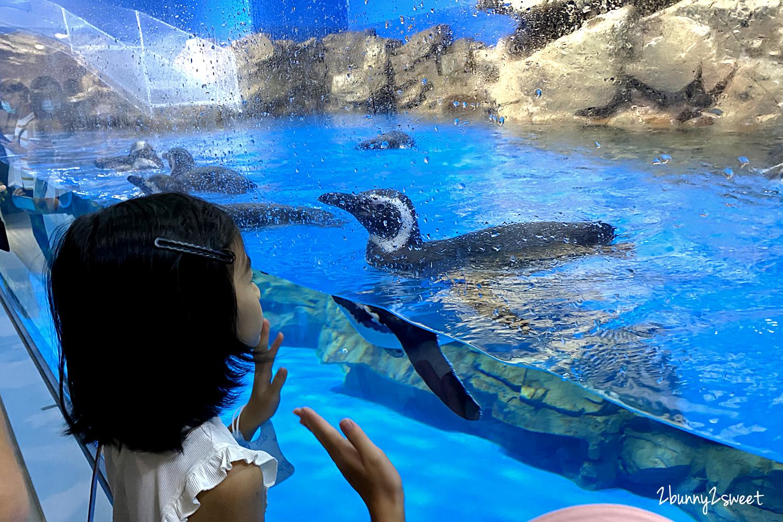 2020-0730-Xpark 水族館-43.png