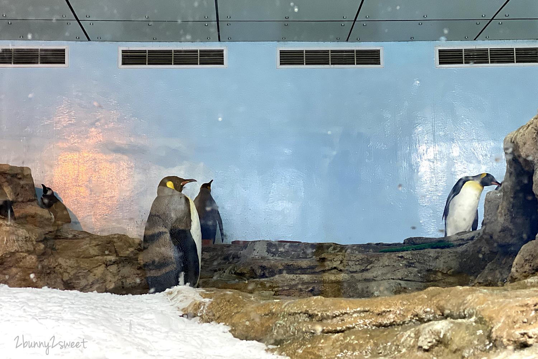 2020-0730-Xpark 水族館-45.png