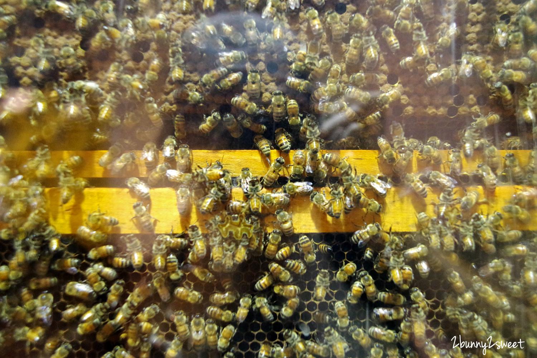 2020-0920-養蜂人家蜂采館-09.jpg