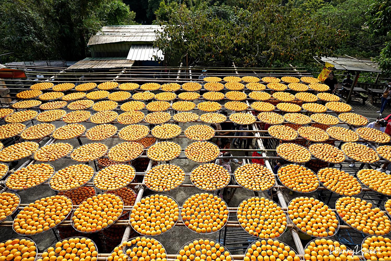 2020-1017-味衛佳柿餅觀光農場-09.jpg