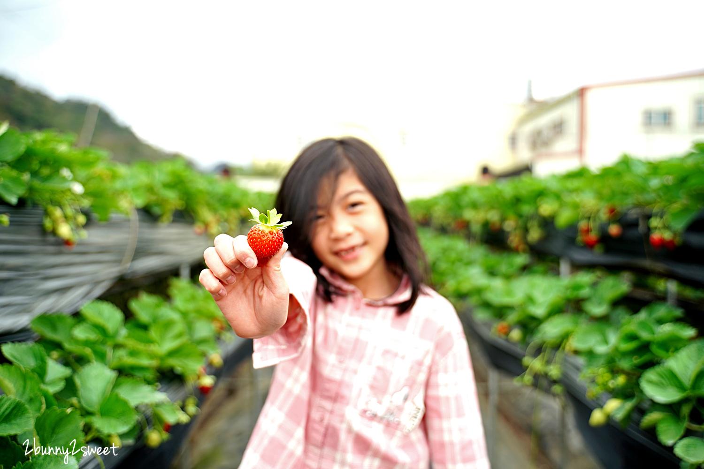 2020-1207-阿松高架草莓園-03.jpg