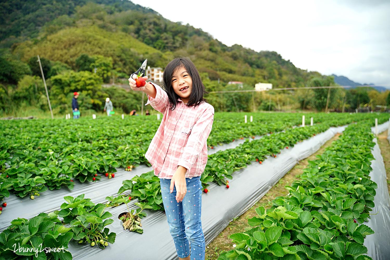 2020-1207-阿松高架草莓園-05.jpg