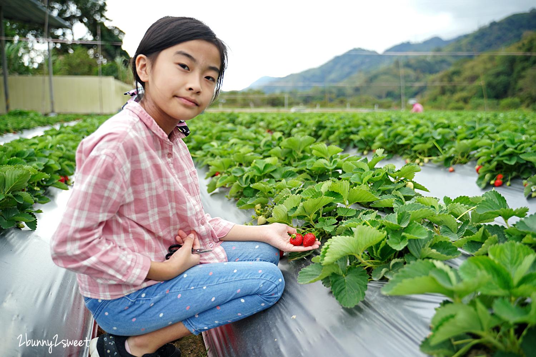 2020-1207-阿松高架草莓園-06.jpg