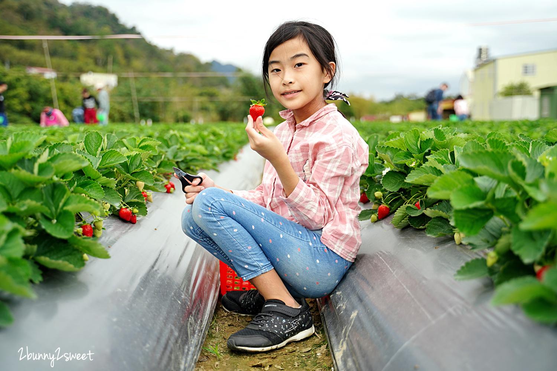 2020-1207-阿松高架草莓園-09.jpg
