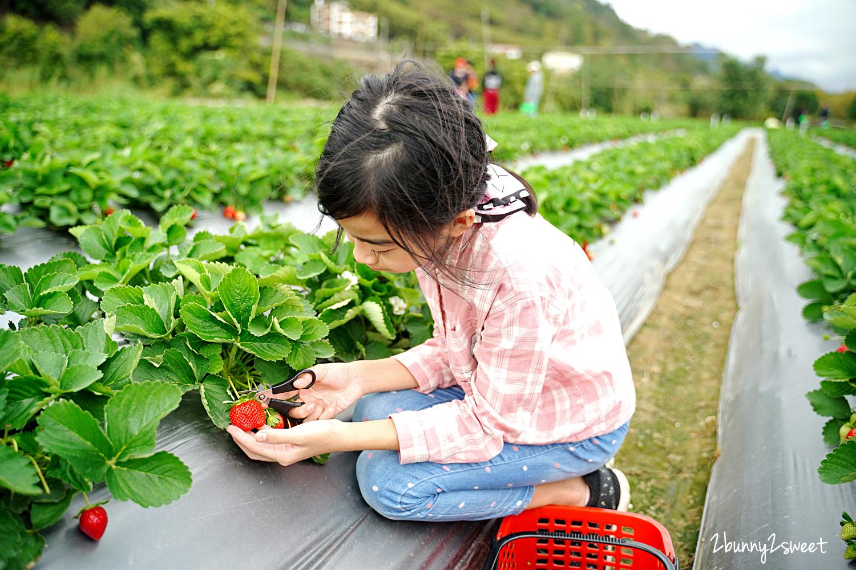 2020-1207-阿松高架草莓園-11.jpg
