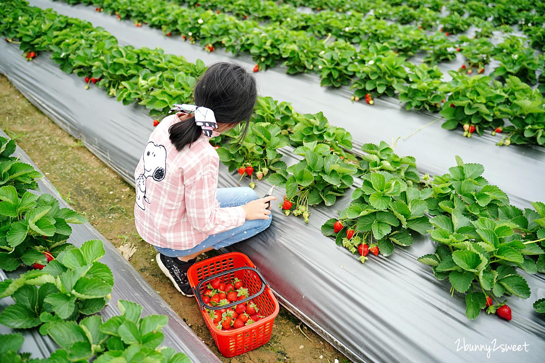 2020-1207-阿松高架草莓園-12.jpg
