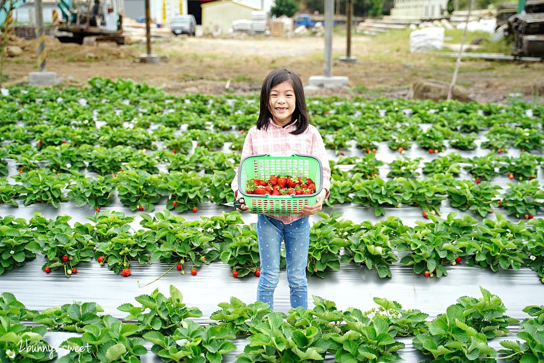 2020-1207-阿松高架草莓園-13.jpg